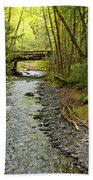 River Through The Rainforest Beach Towel