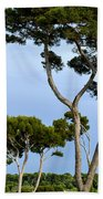 Riviera Trees Beach Towel