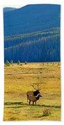 Rmnp Plains In Autumn Beach Towel