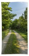 Road In Woods 1 F Beach Towel