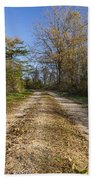 Road In Woods Autumn 4 A Beach Towel