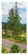 Road Through Custer State Park Beach Towel