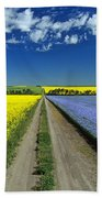Road Through Flowering Flax And Canola Beach Towel