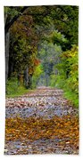 Road To Autumn Beach Towel
