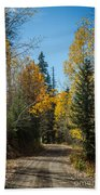 Road To Fall Colors Beach Towel