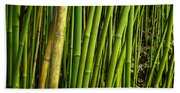Road To Hana Bamboo Panorama - Maui Hawaii Beach Towel