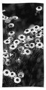 Roadside Wildflowers Beach Towel