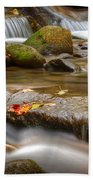 Roaring Fork Stream Great Smoky Mountains Beach Towel