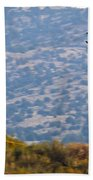 Rob Caster In Miss Diane, Friday Morning 5x7 Aspect Signature Edition Beach Towel