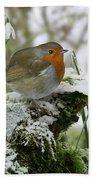 Robin And Snowdrops Beach Towel