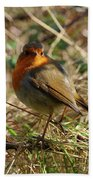 Robin In Hedgerow 2 Inch Donegal Beach Towel