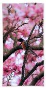Robin In Magnolia Tree Beach Towel