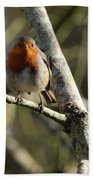Robin On Branch Donegal Beach Towel