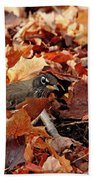 Robin Playing In Fallen Leaves Beach Towel