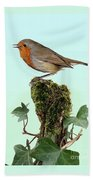 Robin Singing On Ivy-covered Stump Beach Towel
