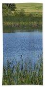 Rochester Wildlife Pond 1 Beach Towel