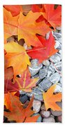 Rock Garden Autumn Leaves Beach Towel