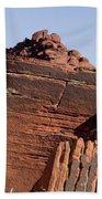 Rock Texture And Lichen Beach Sheet