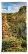 Rocks And Pines Beach Towel