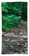Rocky Creek Beach Towel