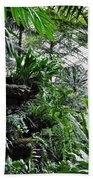 Rocky Fern Room Beach Towel
