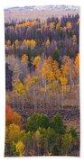 Rocky Mountain Autumn View Beach Sheet