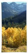 Rocky Mountain High Colorado - Landscape Photo Art Beach Towel