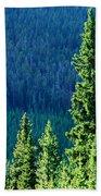 Rocky Mountain Skyline Beach Towel