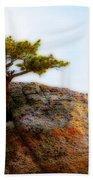 Rocky Mountain Tree Beach Sheet