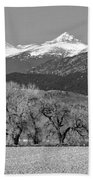 Rocky Mountain View Bw Beach Towel