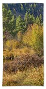 Rocky Mountains Autumn Beach Towel