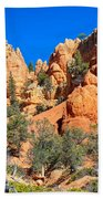 Rocky Range At Red Canyon Beach Towel
