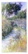 Rocky Trail Beach Towel