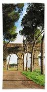 Roman Aqueducts Beach Towel