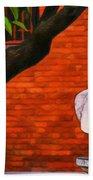 Roman Bust, Loyola University Chicago Beach Sheet