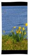Romans 11v33 Beach Towel