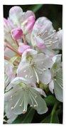 Romantic Rhododendron Beach Sheet