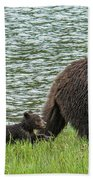 Romping By The Lake With Mama Bear Beach Towel