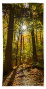 Rooster Comb Trail Beach Towel