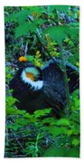 Rooster Grouse Posing Beach Towel