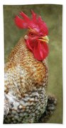 Rooster Jr. Strut Beach Towel
