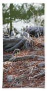 Rooted Lake Edge Beach Towel