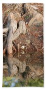 Rooted Reflections Beach Towel