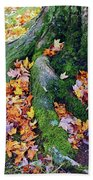 Roots And Leaves Beach Towel