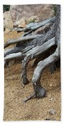 Roots Beach Sheet