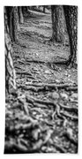 Rootway 2012 - Black Edition Beach Towel