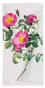Rosa Lumila Beach Towel