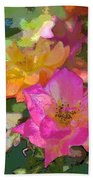 Rose 114 Beach Sheet