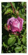 Rose And Bud Beach Towel