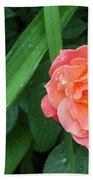 Rose And Day Lily Lives Beach Towel